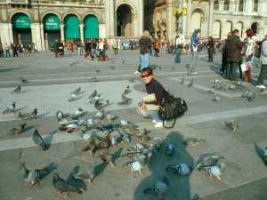 Main sama burung dara...